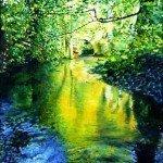 Barlow Brook